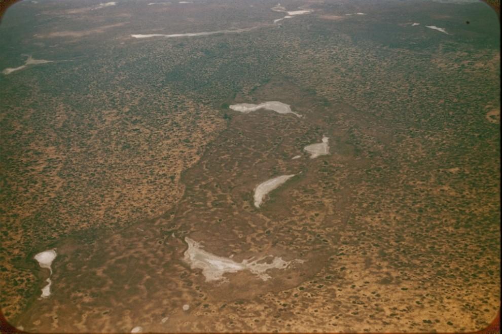 Орол денгизи шимолидаги дашт (степи к северу от Аральского моря)