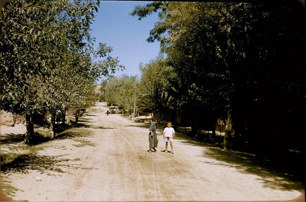 Jamoa xo'jaligi ko'chasi (колхозная улица)