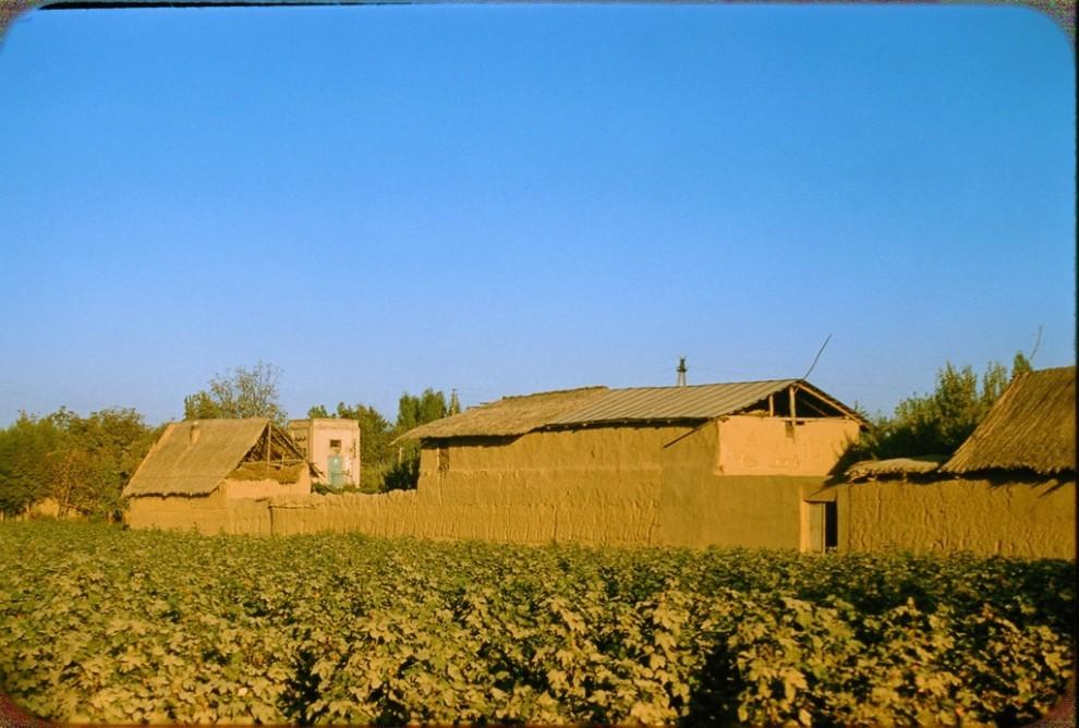 Қишлоқдаги бино (здания в центральноазиатской сельской местности)