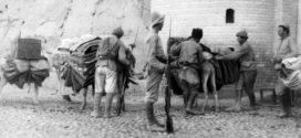 Туркестан в 1917-1922 годах: борьба за власть на окраине России. Адиб Халид